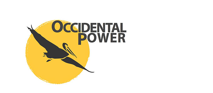 San Francisco's Occidental Power Solar and Cogeneration